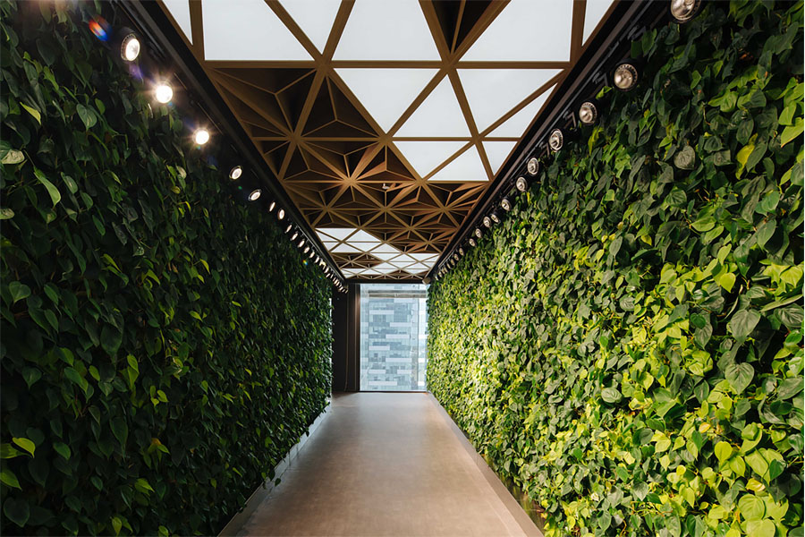 Satisfying the human affinity to biophilic spaces is key part of post-pandemic workplace design